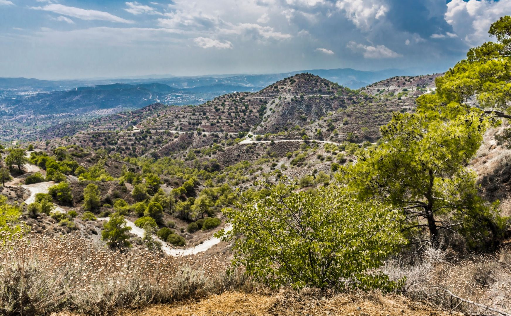 Panorama, Troodos - Chypre ©Istock
