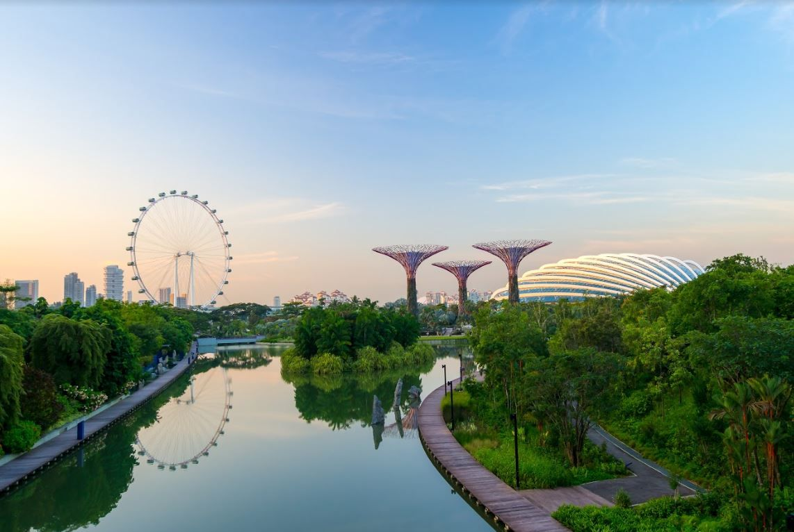 Supertree Grove, Gardens by the Bay - Singapour
